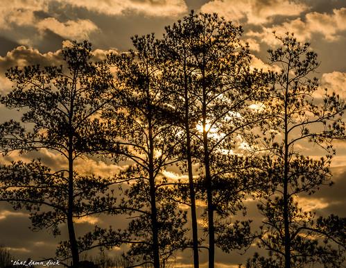 nature clouds unitedstates sundown southcarolina