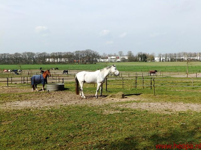 2016-04-09            Veenendaal         30 Km (49)