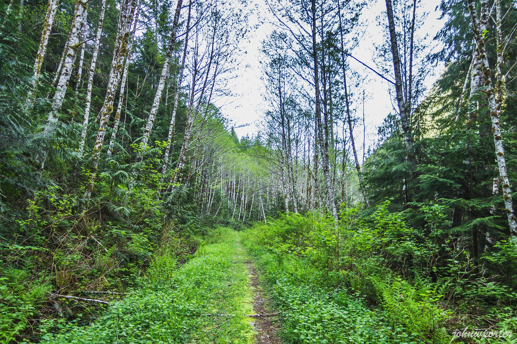 One-mile road walk