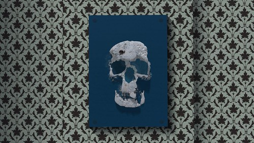 Skull-á-bande | by zuza ritt