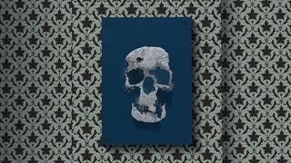 Skull-á-bande   by zuza ritt