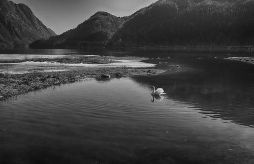 lake ice water monochrome norway landscape fujifilm waterscape telemarkskanalen bandak telemarkcanal ruralexplorer ruraltelemark