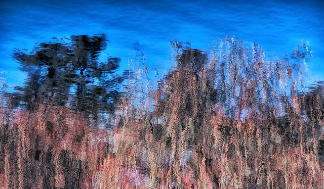 Water Sky & Trees
