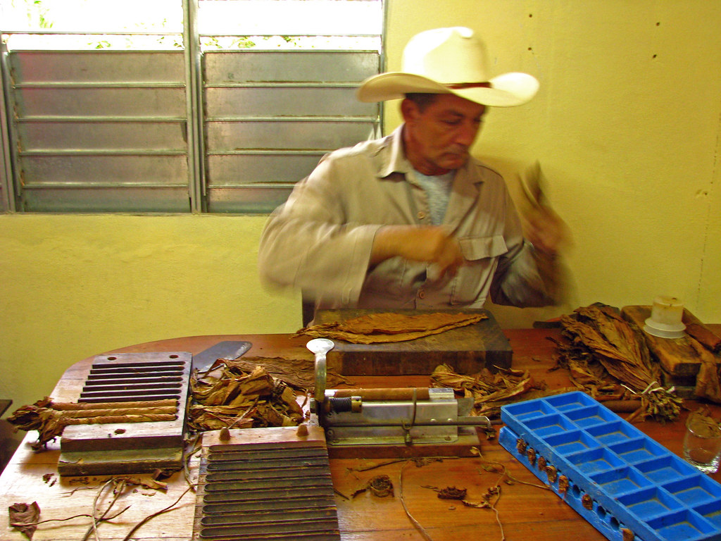Begero Rolling a Cigar