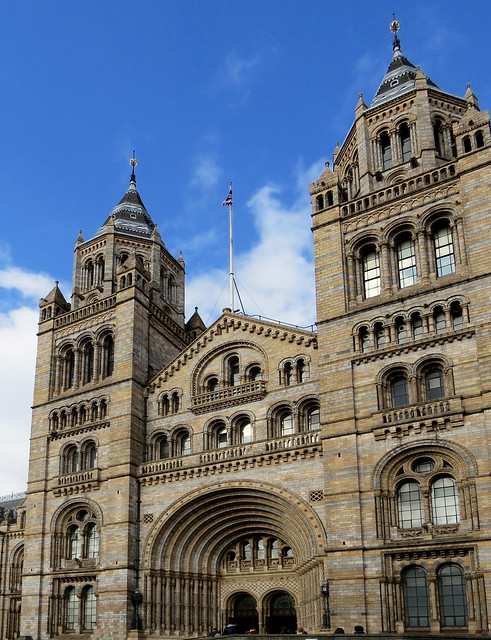The Natural History Museum (10)