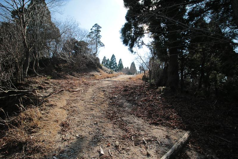 20141122-武奈ヶ岳&京都ライトアップ-0414.jpg