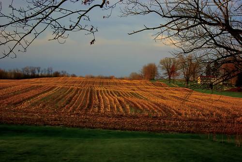 blue ohio sky green nature field lines clouds landscape spring farm sony april agriculture alpha mybackyard 2016 a230 fairfieldcounty ruralohio stoutsville ohiofoothills