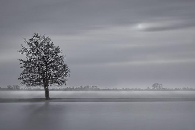 On a misty day