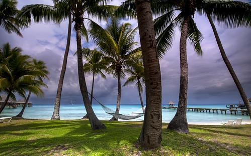 Kia Ora Beach | by Alastair Pollock