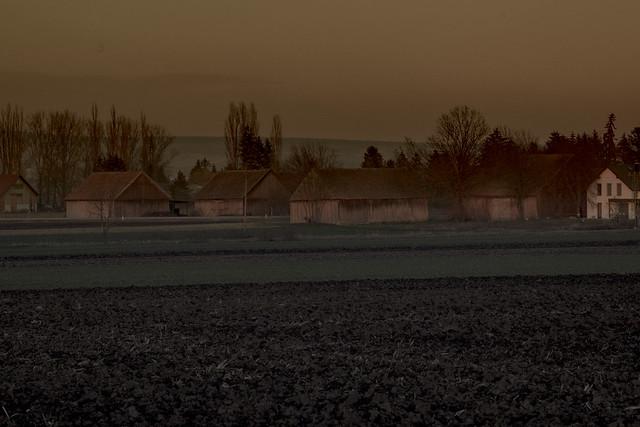 Group of barns