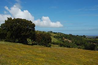 Fields of Chiloé, Chile | by blueskylimit