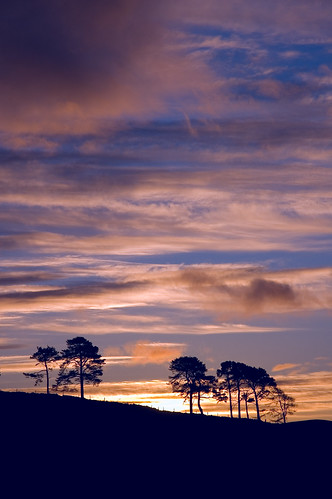 trees sky sunrise d50 scotland aberdeenshire balloch alford mikon cairnballoch stronehill