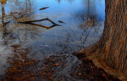 winter snow ice water pool cemetery graveyard minnesota spring pond melt twincities saintpaul hdr flickrdiamond