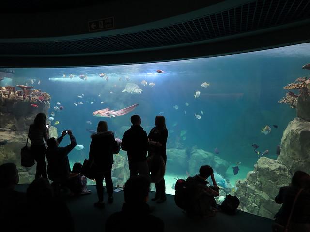 {Aquarium} (Plymouth)