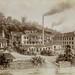 Nestlé history: 1866-1905