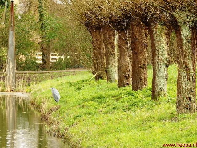 2016-03-23 stads en landtocht  Dordrecht            24.3 Km  (134)