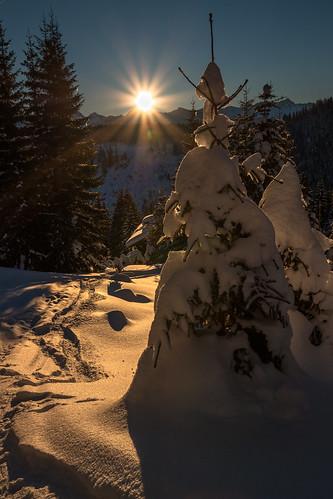 winter de bayern deutschland allgäu obermaiselstein