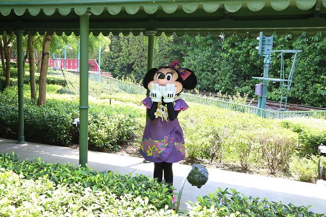 fantasy garden- minnie