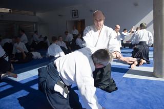 _D3S5812 | by aikido forum kishintai