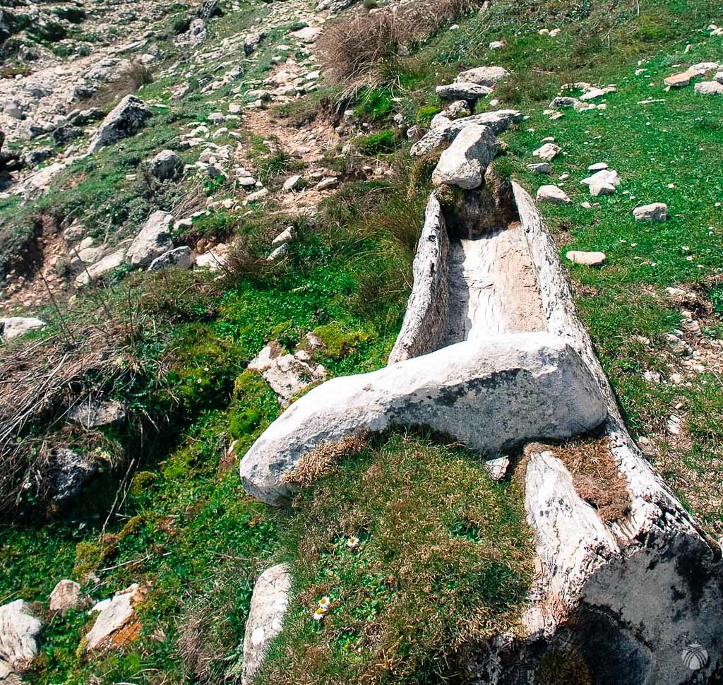 Viejos tornajos en la Fuente de la Piedra Palomera