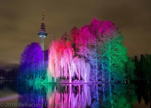 Winterlichter   by refractingdymond