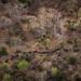 Elephants on the march, in Chad's Zakouma National Park by jeromestarkey