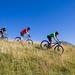 Vélo-VTT-Roller