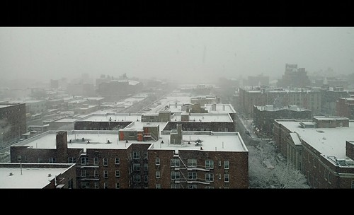 The Morning Surprise - Major Snow Storm Passing over Jamaica, Queens, New York City (USA). | by Esoteric_Desi