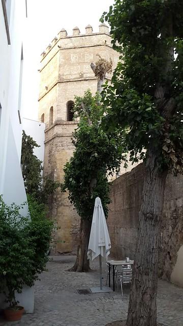 Torre de la Plata desde un bar anejo, Sevilla (España).