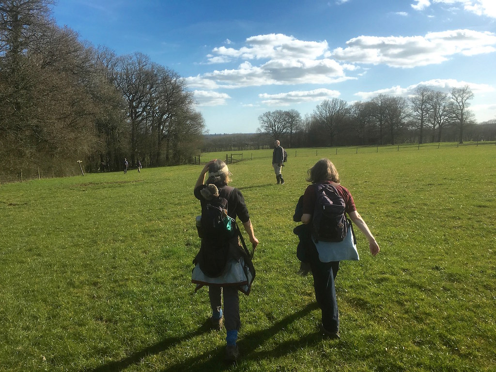 Crossing the field Ockley to Warnham walk