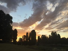 #Queanbeyan #sunset #nofilters #piece_of_earth #закат