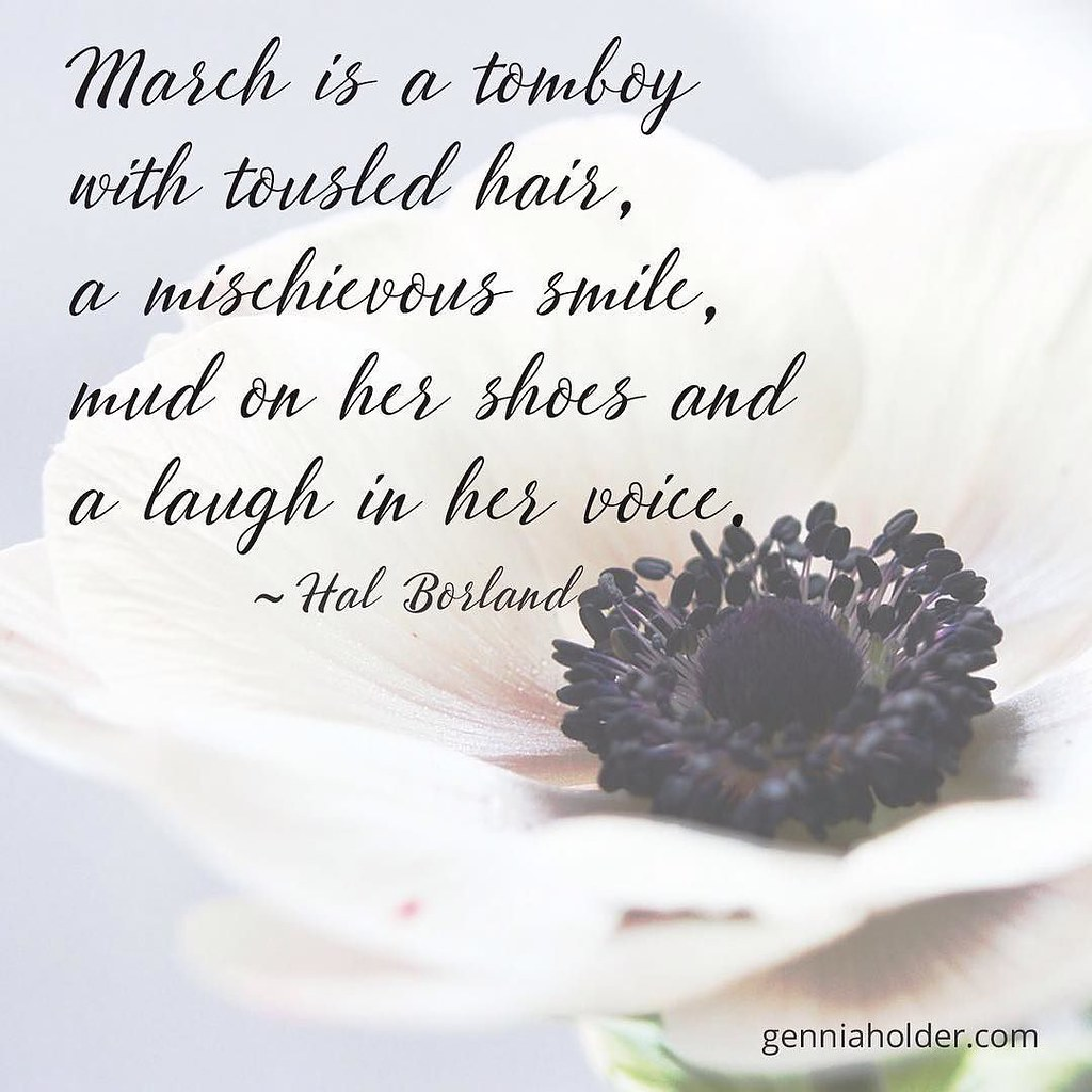 Welcome March Ya Never Know What To Expect Poem Poetr