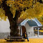 04 Viajefilos en Gruyere, Suiza 32