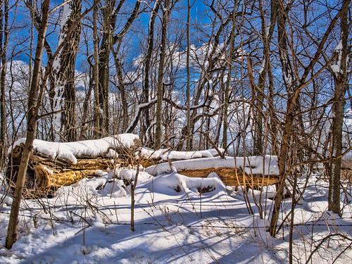 winter usa snow nature landscape geotagged outdoors map indiana olympus mapped noblecounty primelens mirrorless davidcornwell olympusomdem5 olympusmzuiko17mmf18