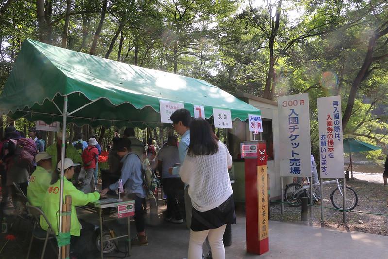 2014-09-23_00108_巾着田.jpg