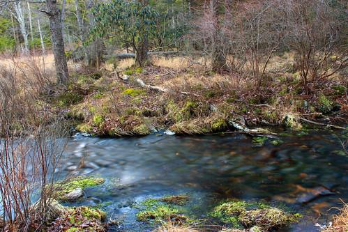 trees winter creek forest rocks stream hiking pennsylvania creativecommons poconos riparian headwaters waynecounty lehighriver palustrineforest westforklehighriver stategameland312 stategamelands312 sgl312