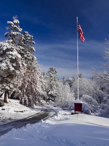 road park trees winter usa snow boston pine forest landscape ma us unitedstates flag massachusetts newengland bluesky olympus melrose bluebird starsandstripes omd malden oakgrove em5 pinebankspark 1250mmf3563mzuiko