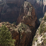 Walters Wiggles and Angels Landing