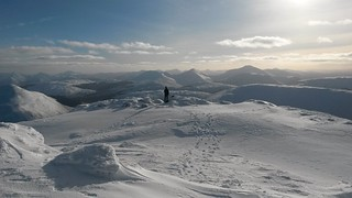 21 Mesmerised by the cars | by jomagal