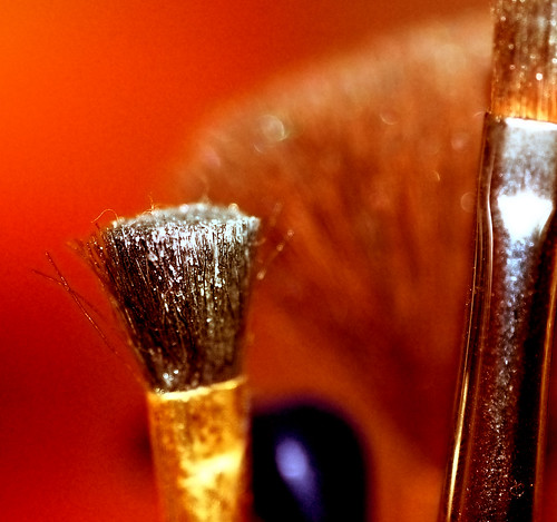 Makeup brush | by annia316