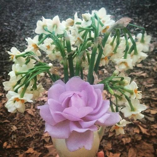 Winterborn bouquet. | by Angeliska
