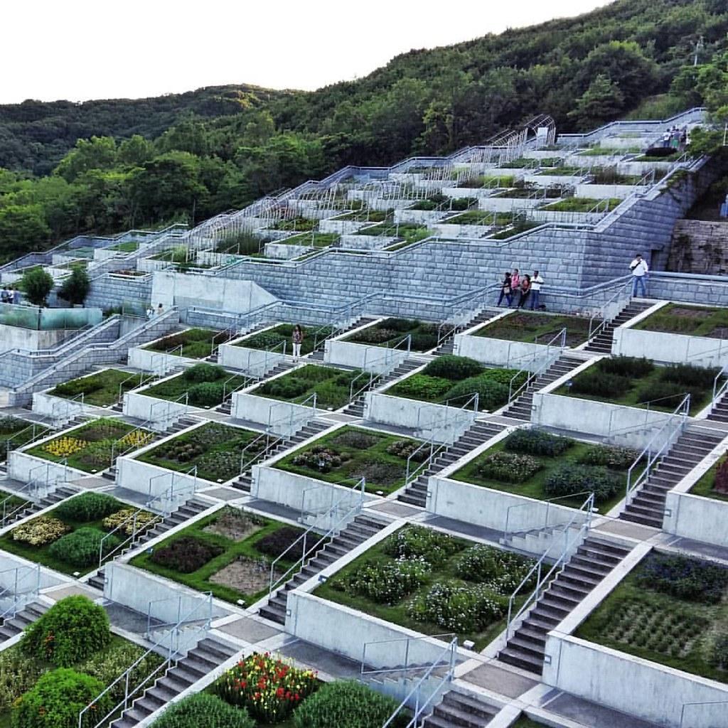 Hyatt Hotel Terraces By Tadao Ando Las Terrazas Del Hotel