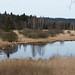 Dolejší padrťský rybník, foto: Petr Nejedlý