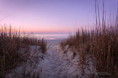 travel usa beautiful grass sunrise lens photography dawn myrtlebeach us spring sand unitedstates review southcarolina footprints wideangle fullframe comparison 2016 surfsidebeach photodujour canoneos6d thousandwordimages dustinabbott dustinabbottnet adobephotoshopcc adobelightroomcc alienskinexposurex sigma20mmf14dghsmart