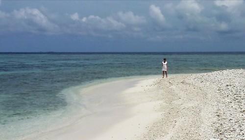 shell shangrila maldives seeker