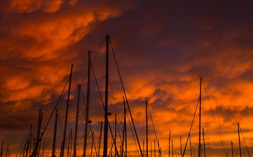 morning red clouds sunrise boats cloudy tasmania redsky mast yachts hobart masts sandybay