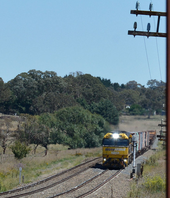 Pacific Nationals through Coles Lane level crossing, Goulburn