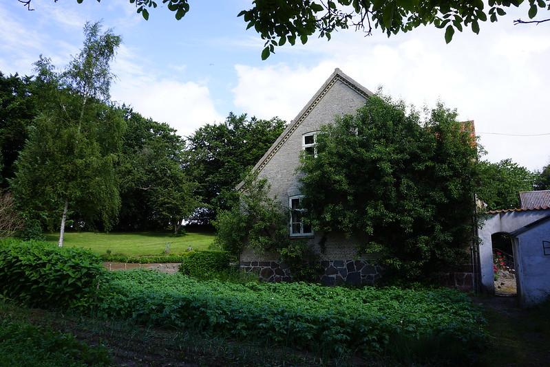 Tjoernbjerg-Have-2013-06-26 (2)