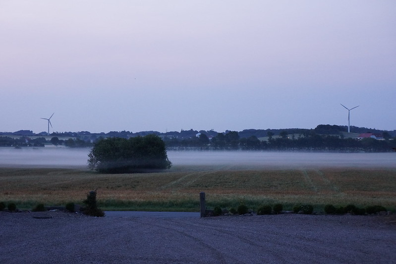 Tjoernbjerg-Marker-2013 (4)