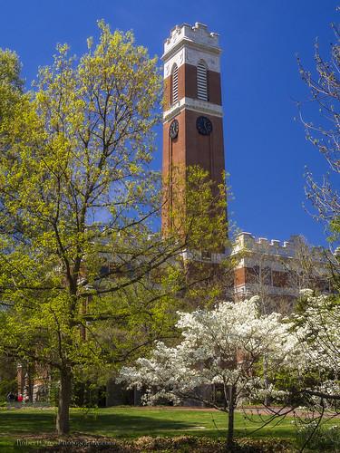 trees portrait brick tower clock college architecture campus cherry landscape spring university tn nashville tennessee south blossoms bluesky olympus vanderbilt bloom omd middletennessee em5 20mmf17panasonic